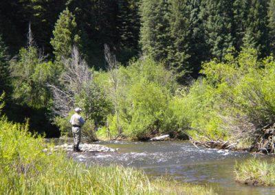 Man Fishing in Meeker CO